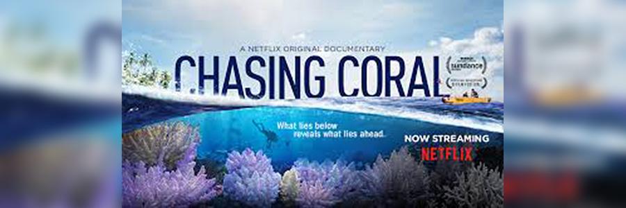 Lo straordinario film CHASING CORAL di Jeff Orlowski a EUDI 2018