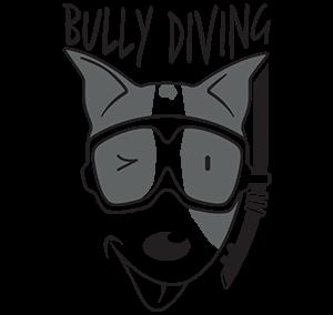 BULLY Diving