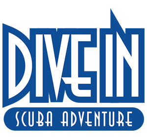 DIVE IN – Scuba Adventure