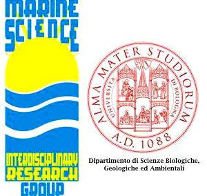 MARINE SCIENCE GROUP – Alma Mater Studiorum – Università di Bologna