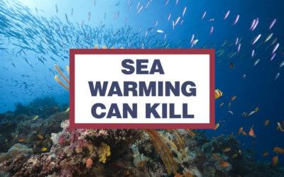 MPA-Engage: Coinvolgere Aree Marine Protette e cittadini per fronteggiare i cambiamenti climatici in Mediterraneo