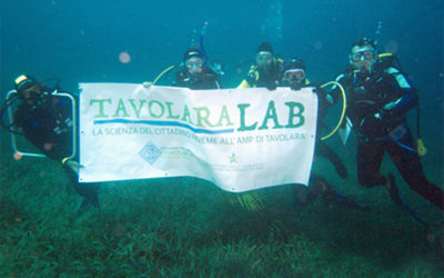 TAVOLARA LAB: la scienza del cittadino insieme all'AMP di Tavolara